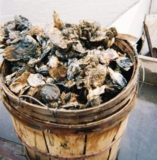 Bushel of Oysters and Crabs(1)